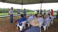 Dia de campo em Balsas apresenta a produtores de grãos tecnologias de produção
