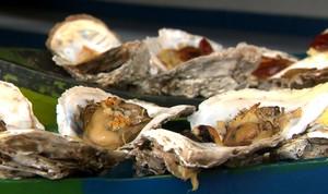 Aproveite para saborear ostras com alho e ervas  (Foto: Reprodução/ Plug)