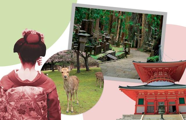 Na imagem: Nara, Koyasan e Kyoto (Foto:  Tarao Mizutani, Getty Images Shiroh Yabe/Sebun Photo, Jtb Photo/Contributor, Education Images / Contributor, Thinkstock Aschlabach, Reprodução Instagram e Divulgação. Agradecimento: Mari Hirata)