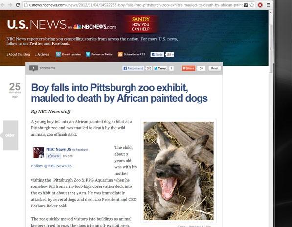 Site da NBC noticia morte da criança nos EUA atacada por cães selvagens africanos em zoológico. (Foto: Reprodução, site NBC)