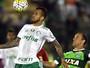 TV Rio Sul transmite Palmeiras x Chapecoense neste domingo (27)