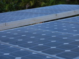 Placa fotovoltaica (Foto: Krystine Carneiro/G1)