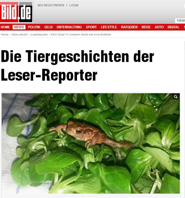 Stefanie Krechlak achou sapo vivo em embalagem de salada (Foto: Reprodução/Bild)