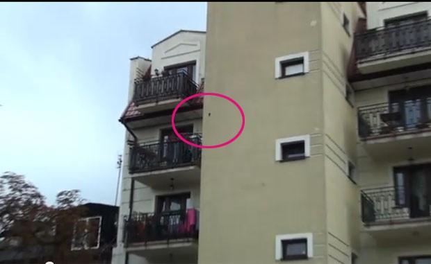 Moradores têm reclamado do barulho feito por pássaro (Foto: Reprodução/YouTube/profesjonalni)