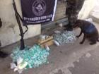 Operação do BAC encontra drogas escondidas na Vila Ipiranga