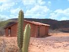 Estiagem coloca 136 municípios em situação emergência em MG