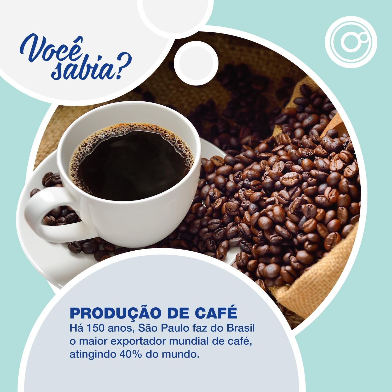 Produção de café é destaque no interior paulista (Foto: Reprodução/TV TEM)
