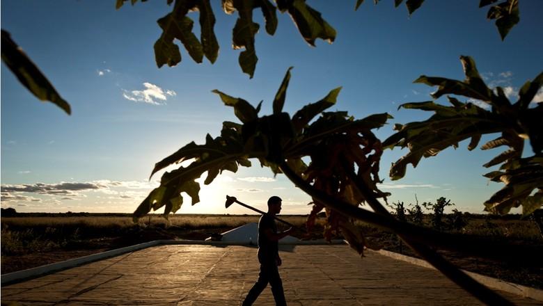 caminhos_da_safra_trabalhador_rural (Foto: Marcelo Curia/Ed. Globo)