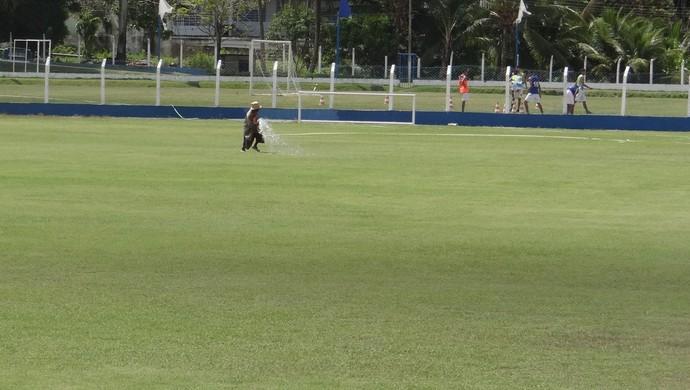 Funcionário cuida da recuperação do gramado do Mutange (Foto: Denison Roma / GloboEsporte.com)