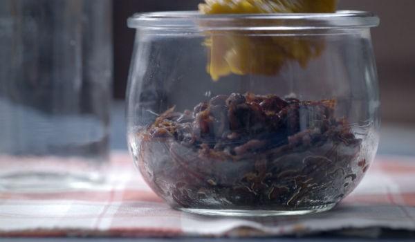 Carne desfiada -  Marmitas e Merendas (Foto: Reproduo)