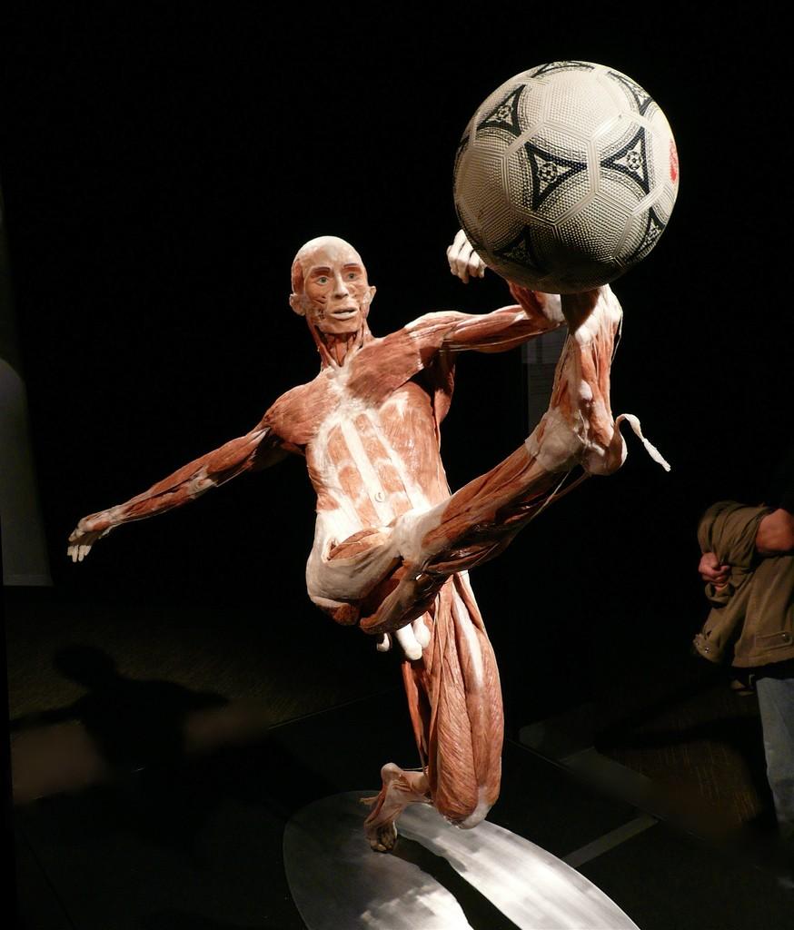 Ciência tem tudo a ver com esporte (Foto  Creative Commons) 0e77eeef499b2