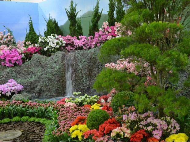 G1 Cidade Das Flores E Morangos Se Prepara Para Grande Festa No - Flores-interior