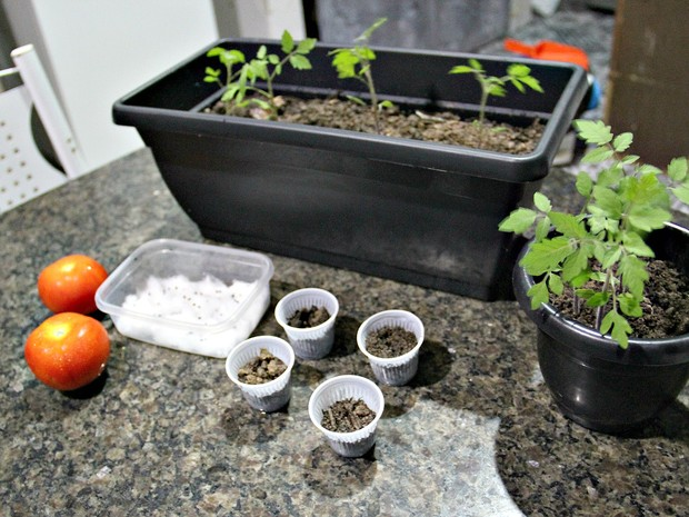 Material utilizado para a produção da horta caseira (Foto: Indiara Bessa/G1 AM)