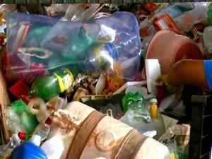 Foram 1,5 mil toneladas recolhidas de fevereiro a março em Brotas (Foto: Wilson Aiello/EPTV)