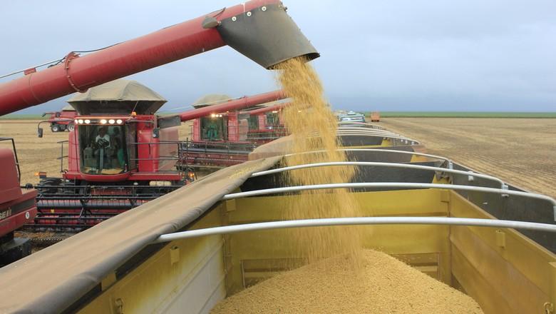 colheita-soja-grao-MATOPIBA (Foto: Ernesto de Souza/Ed. Globo)