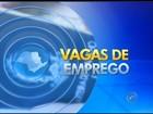 Abertas 115 vagas de emprego  em PATs da região de Itapetininga