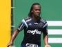 Por títulos, Arouca aposta em sintonia entre torcida e elenco do Palmeiras