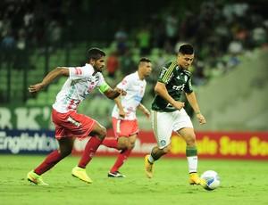 Allione no jogo Palmeiras x Capivariano
