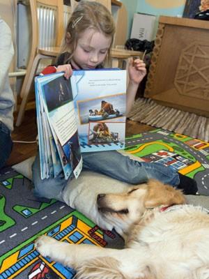 Ingrid, de 6 anos, lê para o cachorro da raça Golden  (Foto: Raigo Pajula/ AFP)