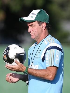 BLOG:   Palmeiras apresenta evoluções com Cuca no comando