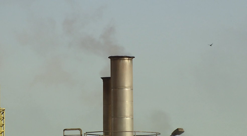 Denúncia aponta uso de borra de café na produção de energia (Foto: Ronaldo Oliveira/EPTV)