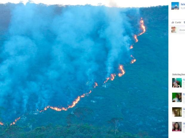 Incêndio de grandes proporções atinge zona rural no norte da Bahia (Foto: Reprodução / Facebook)