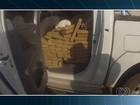 Após perseguição, PM apreende mais de 1t de maconha em caminhonete