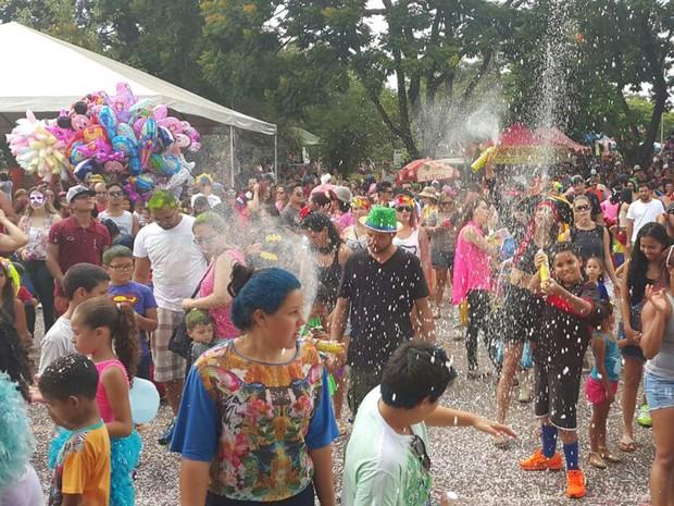 Crianças e adultos aproveitam o desfile do Baratinha, grupo carnavalesco de Brasília, no Parque da Cidade (Foto: Raquel Morais/G1)