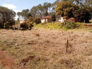 Nova área invadida pelo MST fica a 600 metros do antigo local (Foto: Carlos Alberto Soares/ TV TEM)