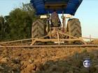 Em SC, agricultores antecipam o plantio da safra do arroz