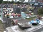 Cemitério de Balneário Camboriú quer reutilizar sepulturas abandonadas