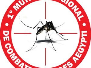 1º Mutirão Regional de Combate ao Aedes Aegypti (Foto: Arte/EPTV)