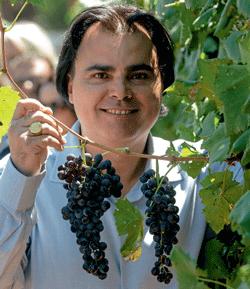 produtos-e-mercados-vinho-edicao-372-outubro-2016 (Foto:  )