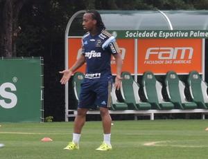 Zé Roberto Arouca Palmeiras (Foto: Felipe Zito)