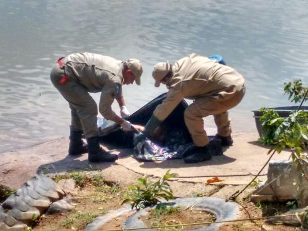 Bombeiros resgatam corpo do pescador em Paraíba do Sul; foto foi enviada pelo WhatsApp por Glauber Ribeiro (Foto: Glauber Ribeiro/Arquivo pessoal)