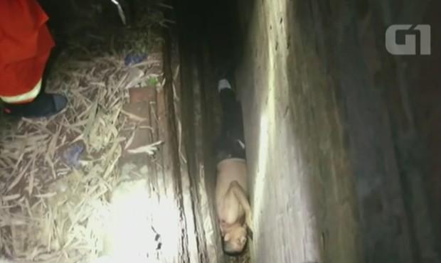 Homem embriagado ficou entalado em pequena fenda  (Foto: CCTV)