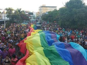 Parada LGBT é realizada em Divinópolis (Foto: Cledson Ferreira/Divulgação)