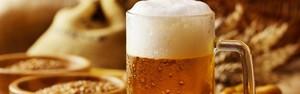 Conheça os cereais usados na cerveja além da cevada (safakcakir/Shutterstock)