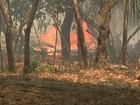 Santarém registra 211 casos de incêndios no 1º semestre de 2016