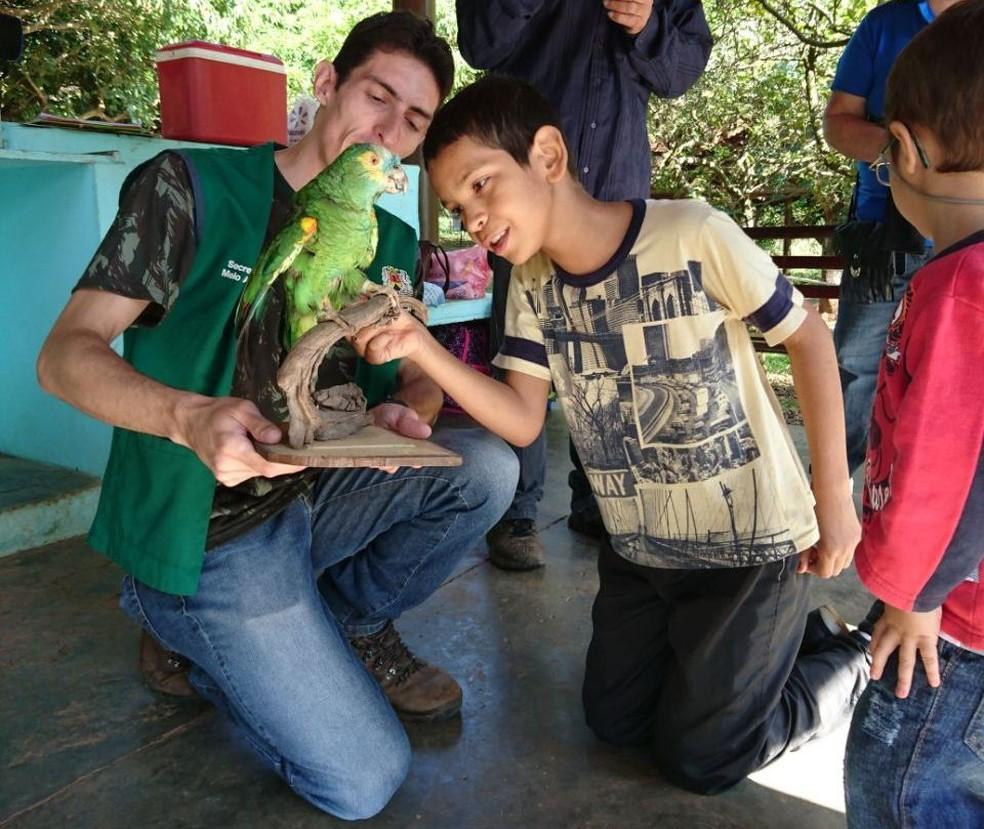 Benedito, de 10 anos, pôde tocar em aves taxidermizadas durante caça ao tesouro (Foto: Fernanda Szabadi/G1)
