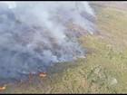 'Incêndios são provocados por pessoas', diz chefe de parque na BA