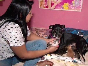 Cadela amamenta gatos na Bahia (Foto: Reprodução/ TV Oeste)