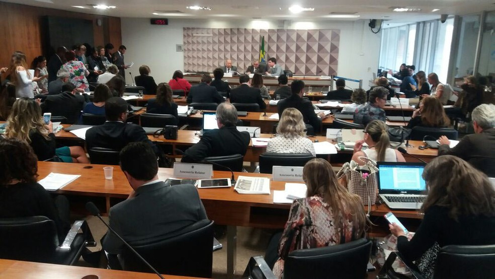 Relator apresenta relatório da reforma do ensino médio na Comissão de Educação (Foto: Bernardo Caram/G1)
