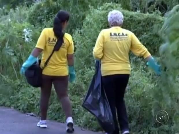 Agentes fazem fiscalização da dengue em Catanduva (Foto: Reprodução / TV TEM)