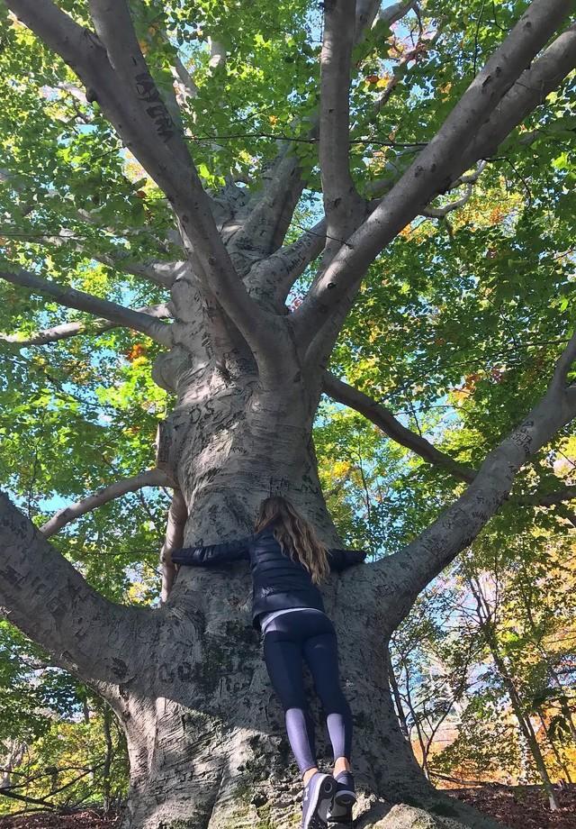 Gisele abraça árvore (Foto: reprodução/instagram)