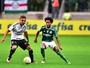 Palmeiras e Ponte Preta disputam partida amistosa neste domingo (29)