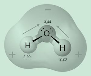A água é uma molécula polar. (Foto: Wikicommons)