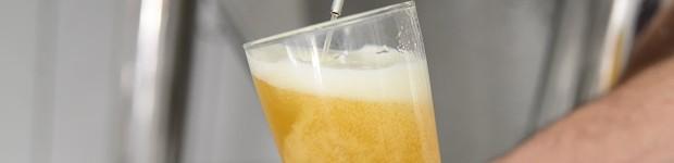 Fazenda de soja aposta em produção de cerveja (Fazenda de soja aposta em produção de cerveja (Canarinho Press))