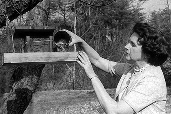 Rachel Carson (Foto: Reprodução)