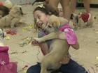 ONG do DF promove baile de Carnaval para animais abandonados
